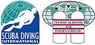 SDI_TDI-Logo